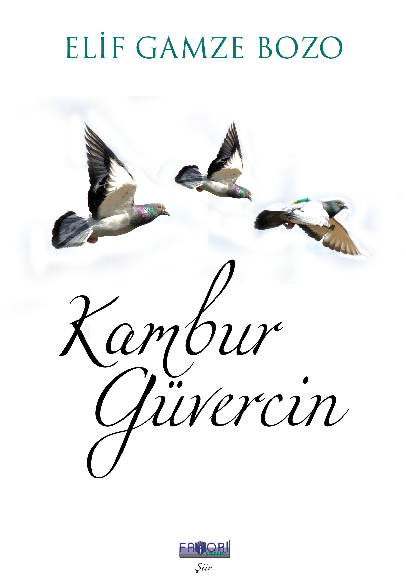 Kambur Güvercin - Elif Gamze Bozo